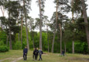 Konzept für Theodor-Krohne-Park