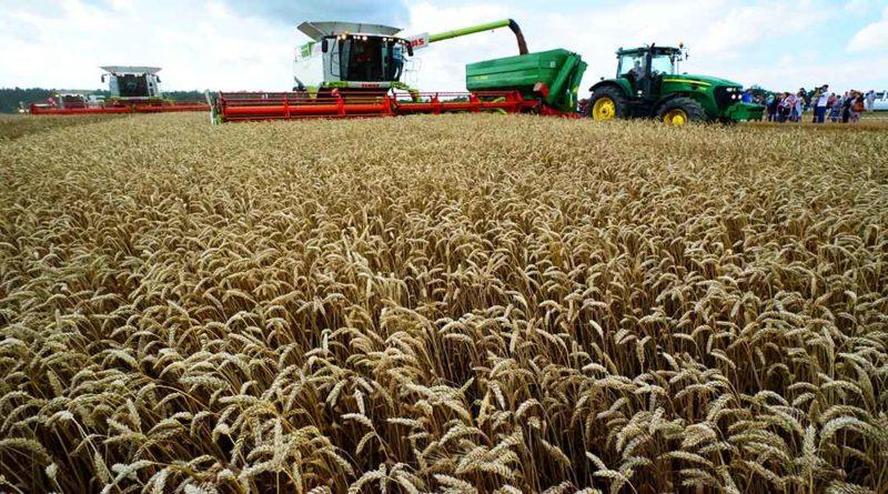 Deutsch-russische Saatgut-Kooperation